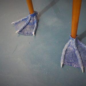 Pattes de table Fou à pieds bleus