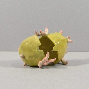 Bols emboîtés Pomme de terre germée